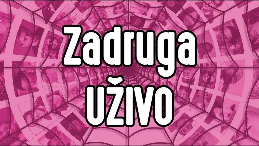 Zadruga Uživo 24 Sata - TV Pink - Zadruga Uživo - TV Pink