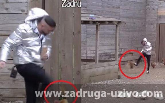 Za svaku osudu! Ša šutirao životinje u dvorištu! (VIDEO)